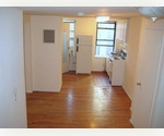 Nice newly renovated Studio in East Village.